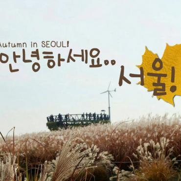 Autumn In SEOUL ❀❀