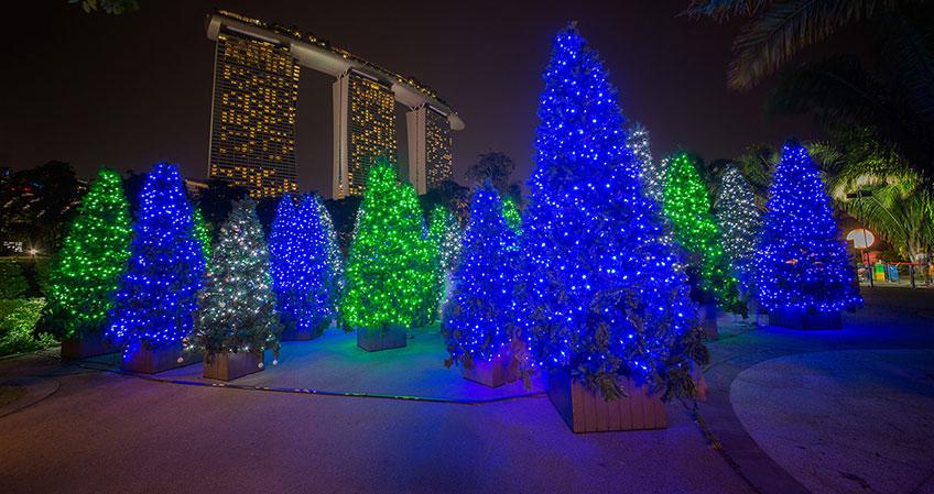 เที่ยวคริสต์มาสและชมไฟประดับสุดยิ่งใหญ่ ในงาน